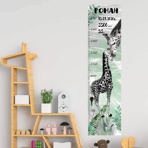 Ростомер Жирафы